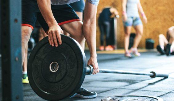 Testosteron sprzyja mięśniom